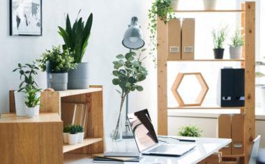 Set da scrivania: una fantastica idea regalo